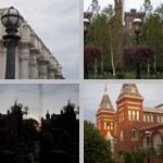Streetlights photographs