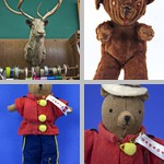 Stuffed Animals photographs