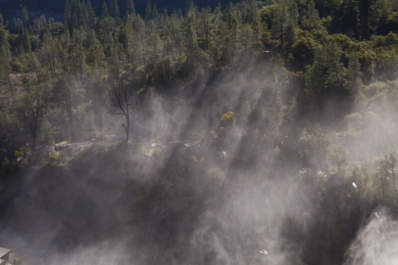 Sunlight Streaming through Water Vapor above the Tuolumne River
