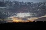Sunset Illuminating Cirrus Clouds on Horizon