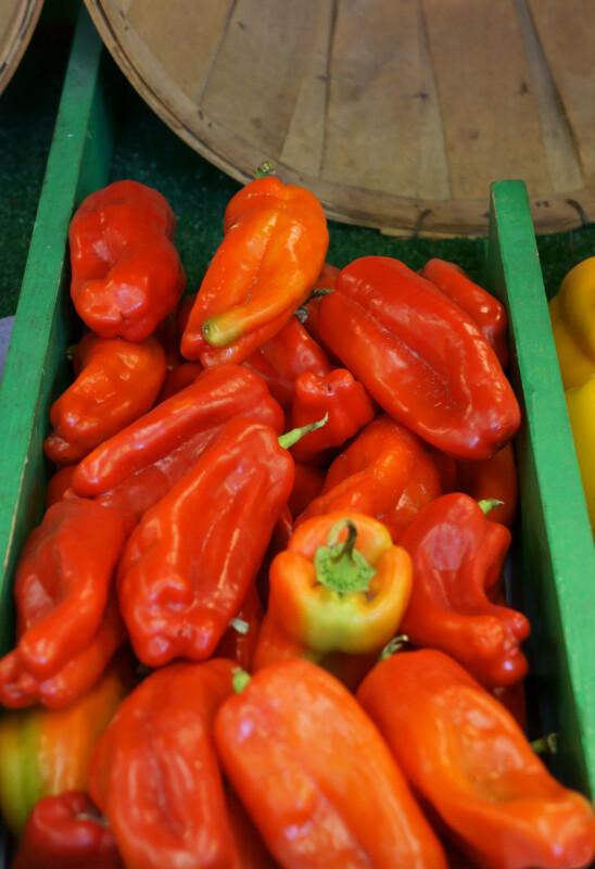 Sweet Cubanelle peppers (Capsicum annuum)
