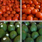 Tampa Bay Farmers Market photographs