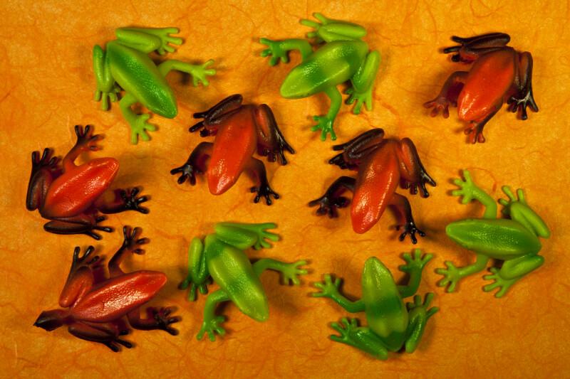 Ten Frogs