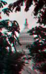 The Dome of the United States Capitol