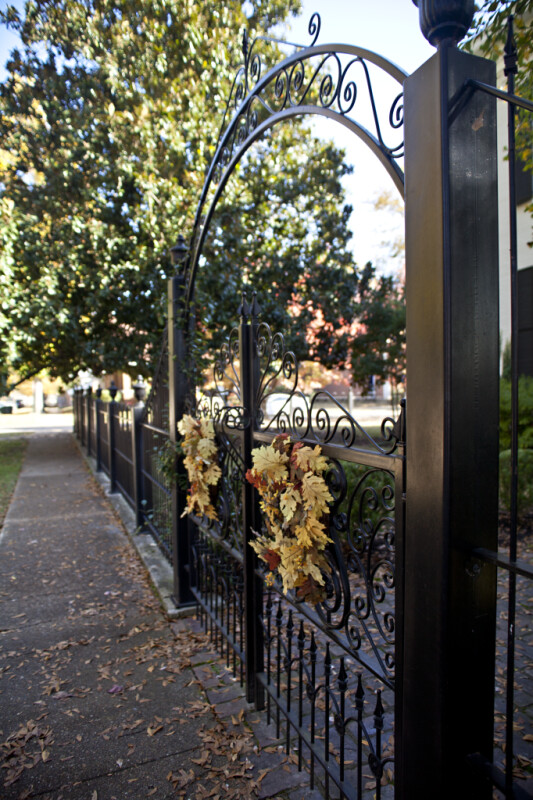 The Fence at the Sekeles Home