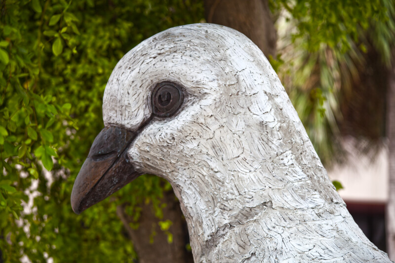 The Head of a Large Pigeon Sculpture
