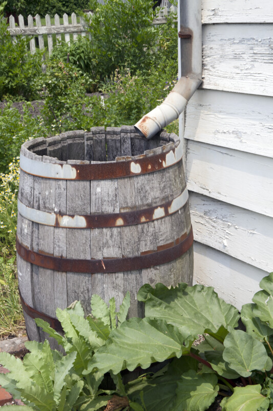 The Rain Barrel with the Warped Staves