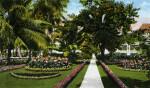 The Royal Poinciana Grounds and Tea Garden