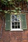 The Trellis, the Vine, the Window, and the Brick Wall