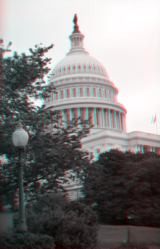 The United States Capitol, with Trees Beneath the Dome