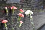 Three Flowers at Wall