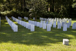 Tombstones in the Shade