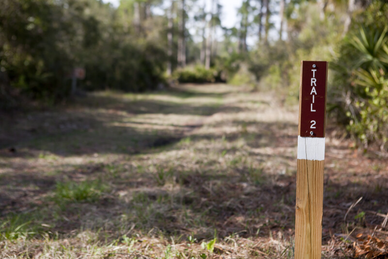 """TRAIL 2"" Wooden Post"