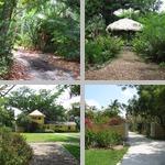 Trails, Footpaths, Boardwalks, etc photographs