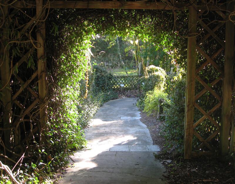 Trellis Arch