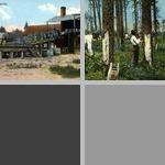 Turpentine photographs