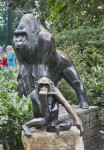 Two Bronze Gorillas at the Artis Royal Zoo