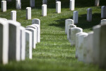 Two Rows of Headstones