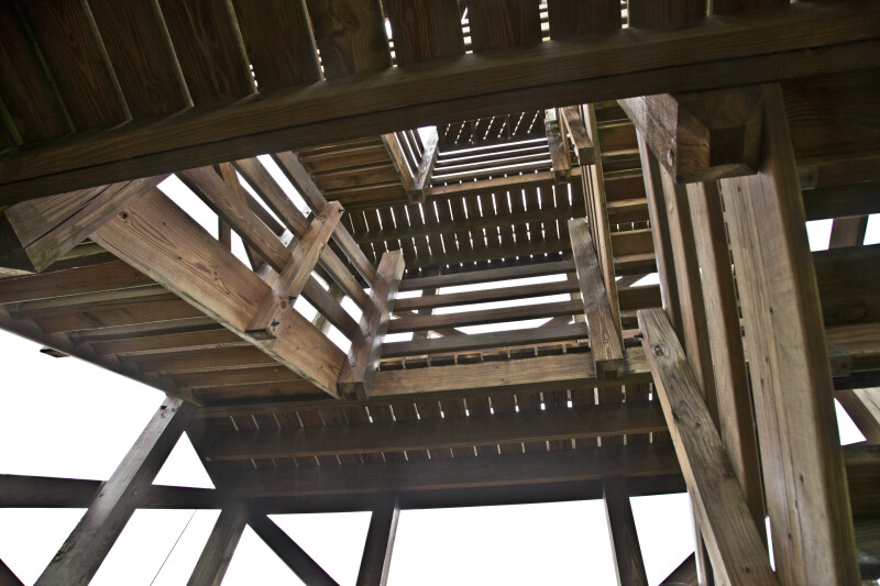 Upward View of Stairs at Myakka River State Park