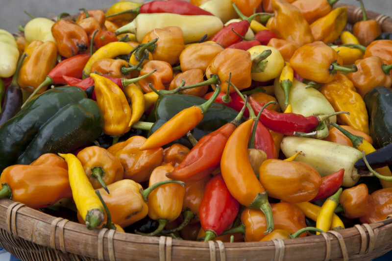 Various Peppers at Monroeville Farmers' Market