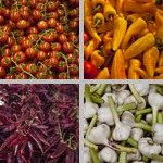 Vegetables photographs