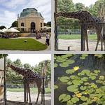 Vienna Zoo photographs