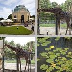 Vienna Zoo photographs