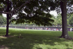 Vietnam Veterans Memorial Through Trees