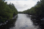 View of Buttonwood Canal