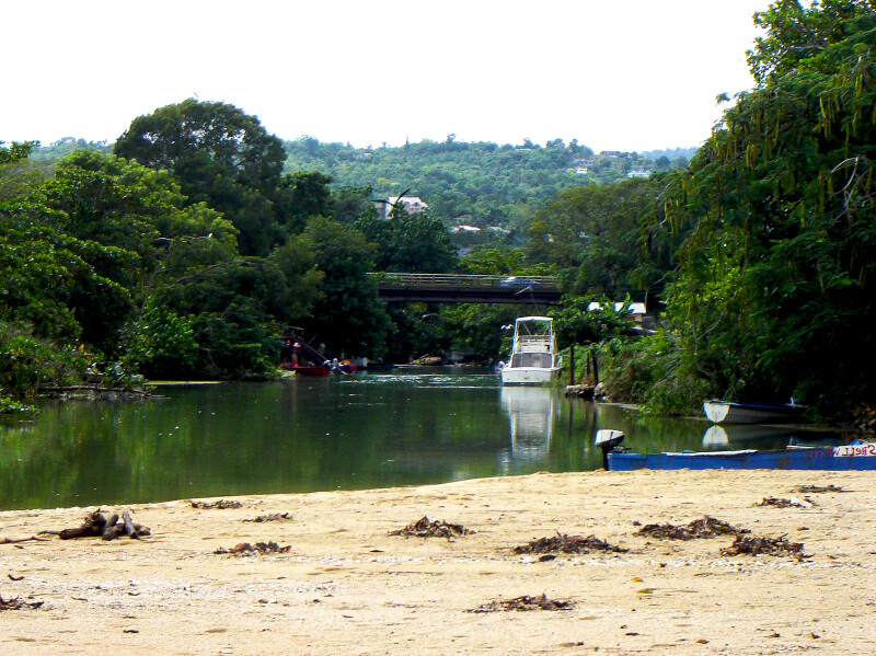 View of the River
