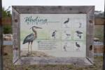 Wading Birds Sign