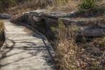 Walkway at the San Antonio Botanical Garden