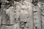 Wall of Coral Fossils and Sediment