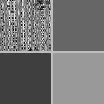Wallpaper photographs