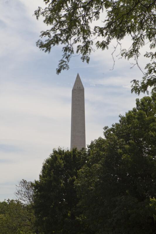 Washington Monument Behind Trees