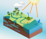 Water Cycle Illustration with Directional Arrows
