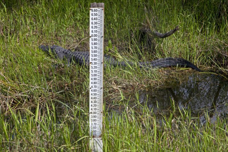 Water Level Measurement Post