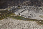 Water on Limestone at the Espada Acequia
