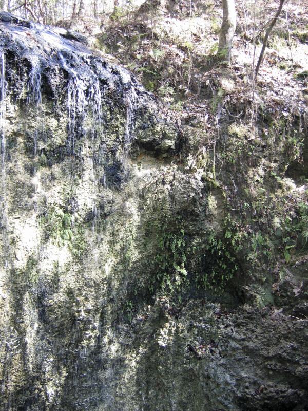 Waterfall at Falling Waters