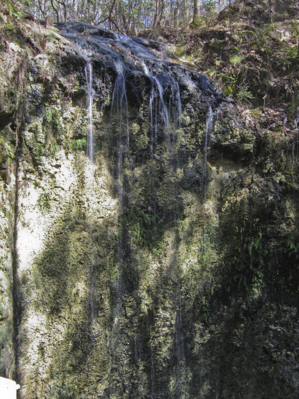 Waterfall at Sinkhole
