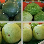 Watermelons photographs