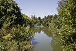 Waterway at the UC Davis Arboretum
