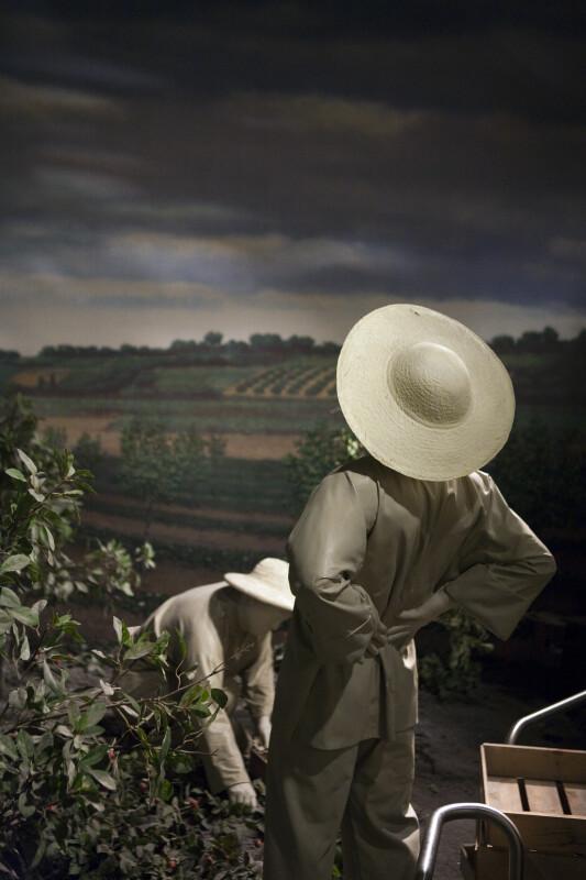 Watsonville Farmers