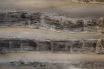 Wavy Weathered Wood