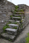 Weeds Growing through Cracks in Stone Stairs