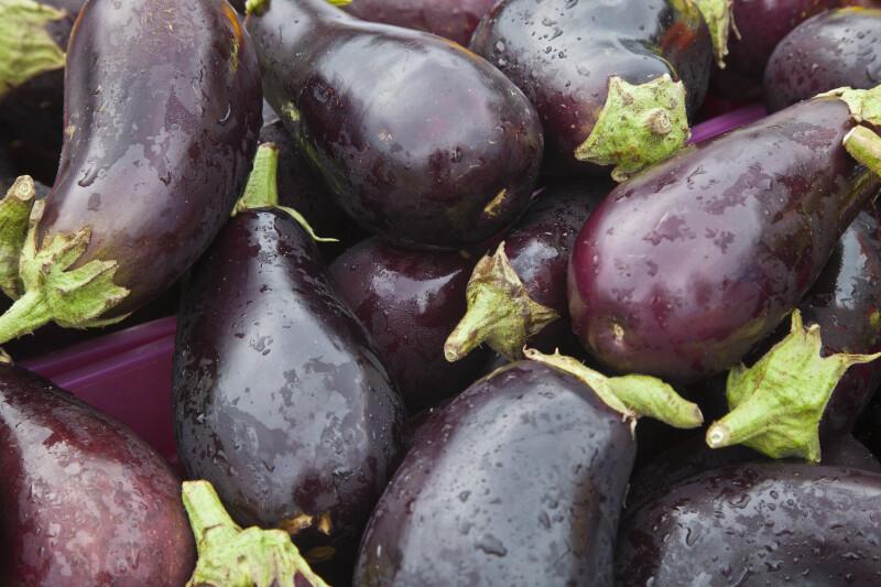 Wet Eggplant Close-Up