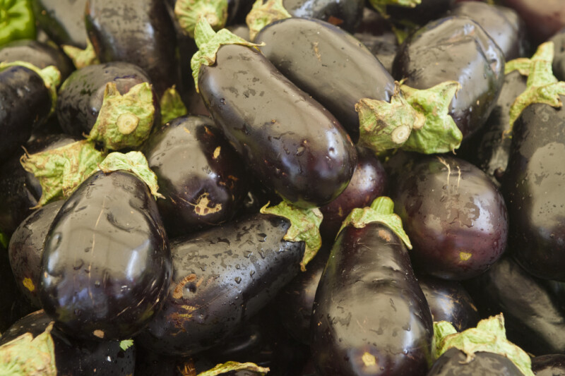 Wet Eggplants on Display at Haymarket Square