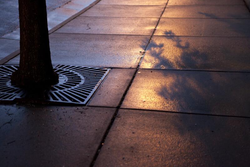 Wet Sidewalk