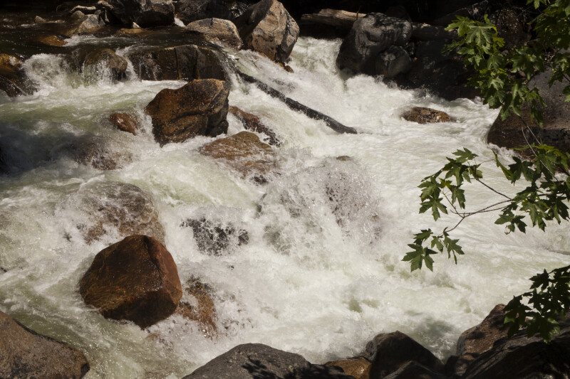 Whitewater in a Small Creek