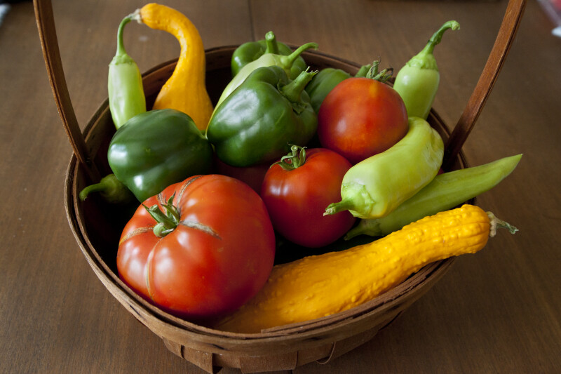 Wicker Basket Containing Beefstake Tomatoes, Green Bell Peppers, Light-Green Chili Peppers, & Crookneck Squash